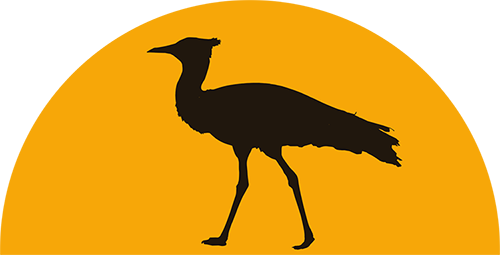 Bustards Birding Tours